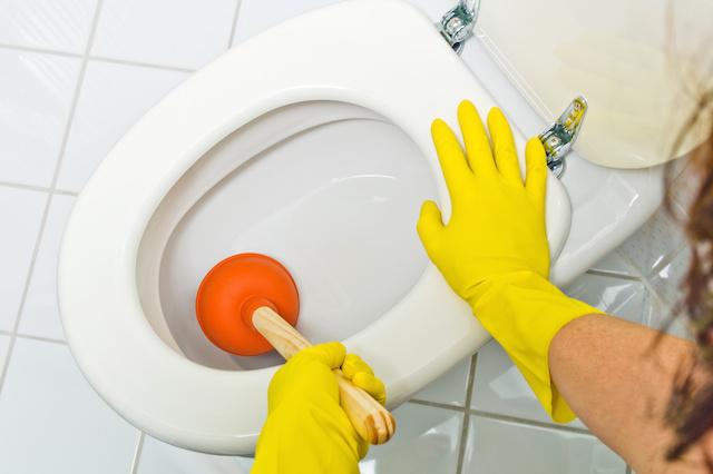 toilet_clogging